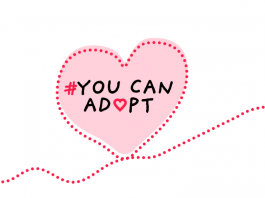 You Can Adopt