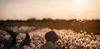 Adoption myths